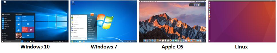 Desktop OS